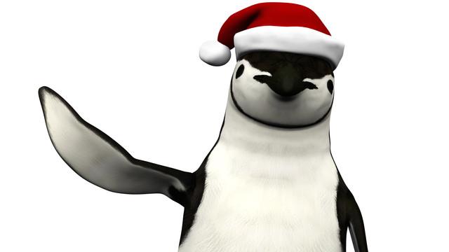The Penguin Show