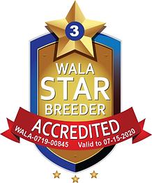 Bayou Labradoodles  WALA Star Logo-0719-