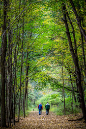 Brothers_Walk_in_the_Woods_©2014_Len_Bis