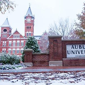Around Auburn