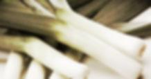 семена лука