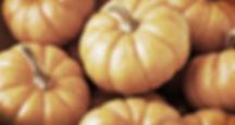 семена тыквы, арбуза, дыни
