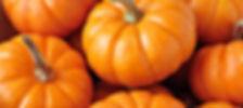 Семена тыквы, самена арбуза, семена дыни