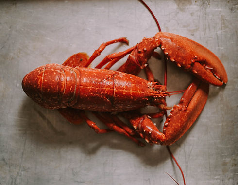 Banquet Boat, Lobster, Seafood, Locally sourced, Dartmouth, Devon