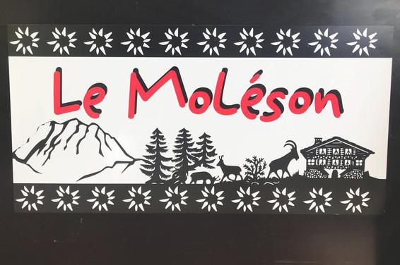Visuel pour le stand du Moléson à la Fête des vignerons