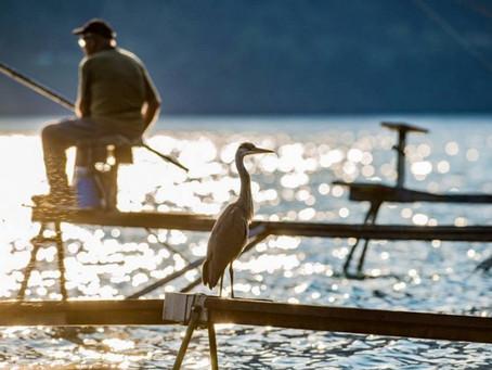 Рыбалка на озере Комо. Лицензия на рыбную ловлю 2018 года.
