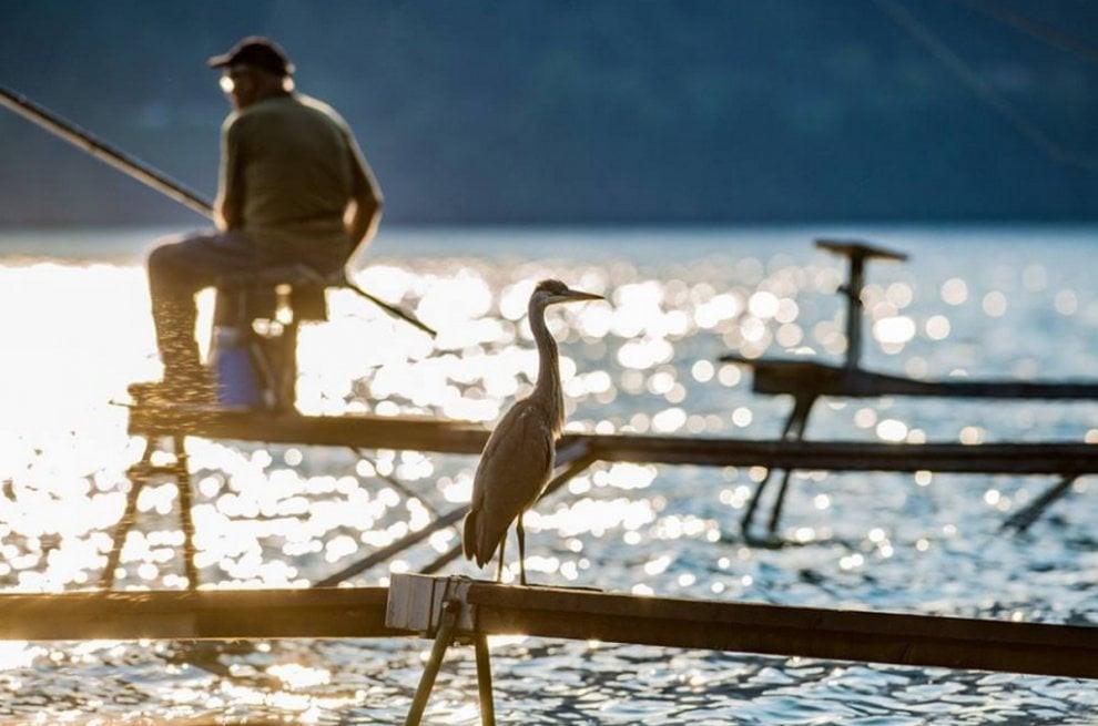 Рыбалка на озере Комо. Лицензия на рыбную ловлю