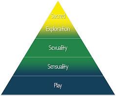 sexual wellness model