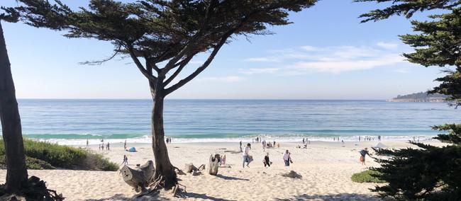 カーメル(Carmel-by-the-Sea) *トラベル*