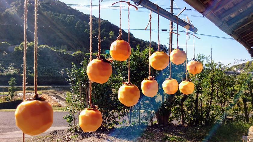 干し柿のはなし *里山の暮らし*