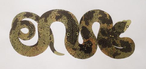 Snake #3