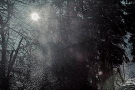 Cosmique Snow