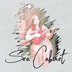 seacabinet square-1.jpg
