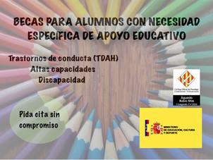 Becas para alumnos con necesidad específica de apoyo educativo