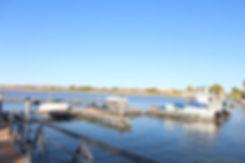 Daily Dock.JPG