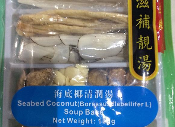 东亚海底椰清润汤料 100g EA Seabed Coconut Soup Base