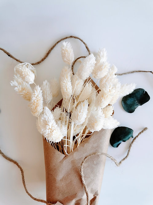 Bottes de phalaris blanchi