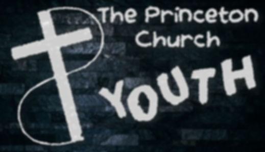 TPC Youth Grey brick symbol.JPG
