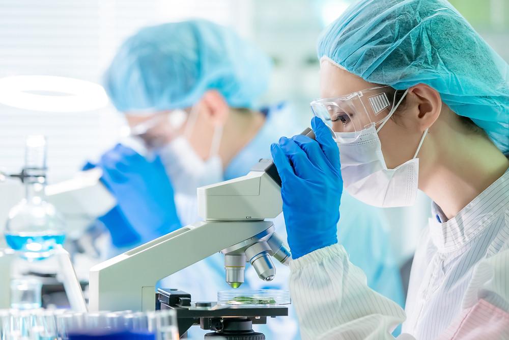 Vaccine researchers in the laboratory