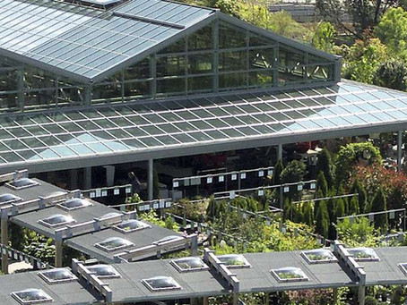 NEUERÖFFNUNG in DÜRNTEN (Schweiz)