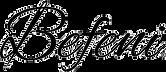 Logo Befeni Shop