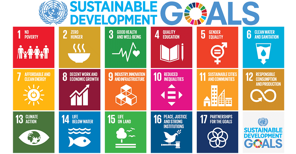 The UN's 17 goals for sustainable development; gender equality is number 5 on the list. (Source: un.org)