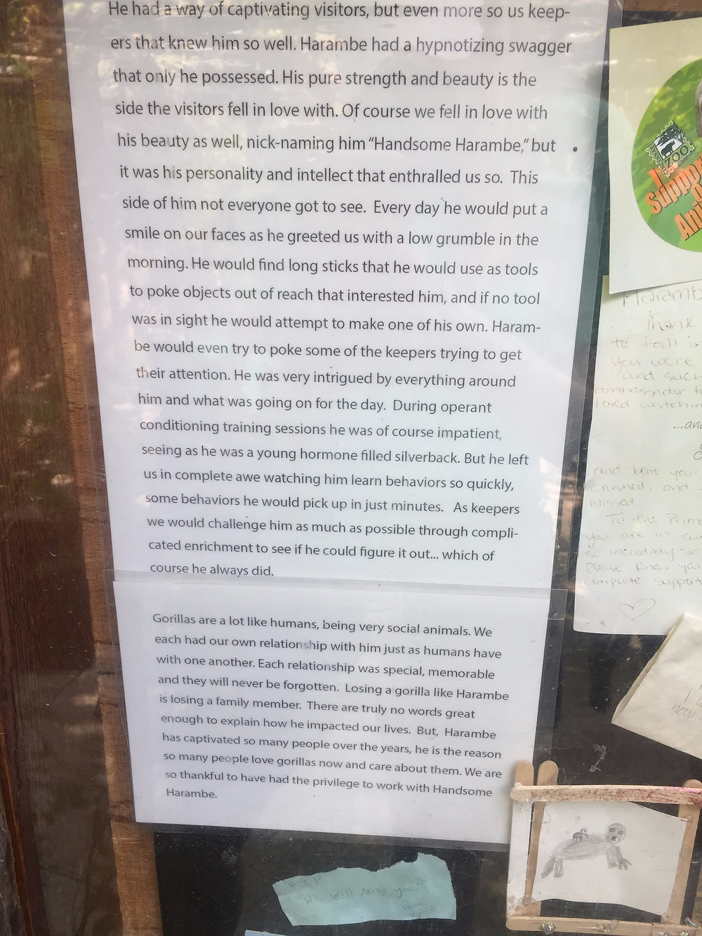Letter on the Honoring Harambe sign from the zookeepers that worked with him.