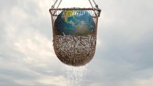 Got Any Sustainability? Go Fish.