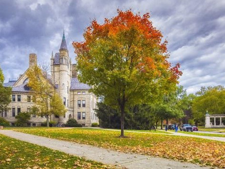 The Waiting Game: A College Tour, Despite COVID
