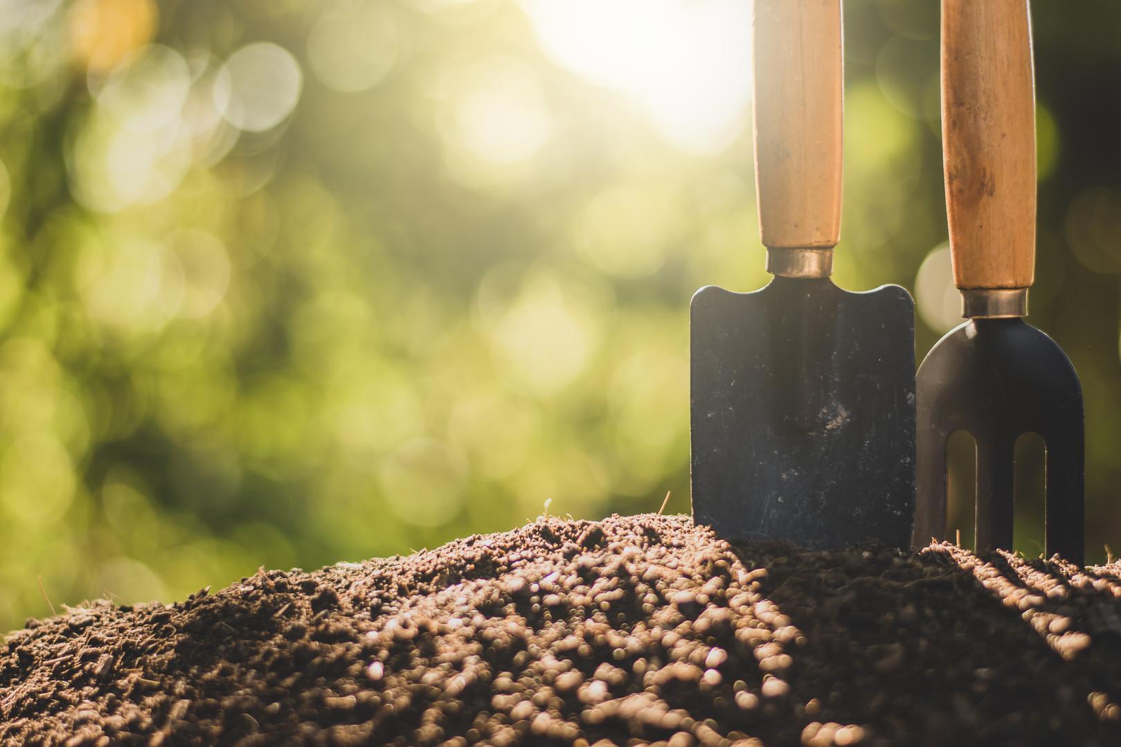 Comment semer vos graines