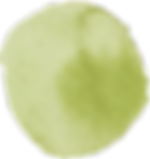 12672-NOC5LM-02.png