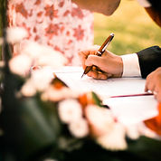 contract-depth-of-field-flowers-210642.j