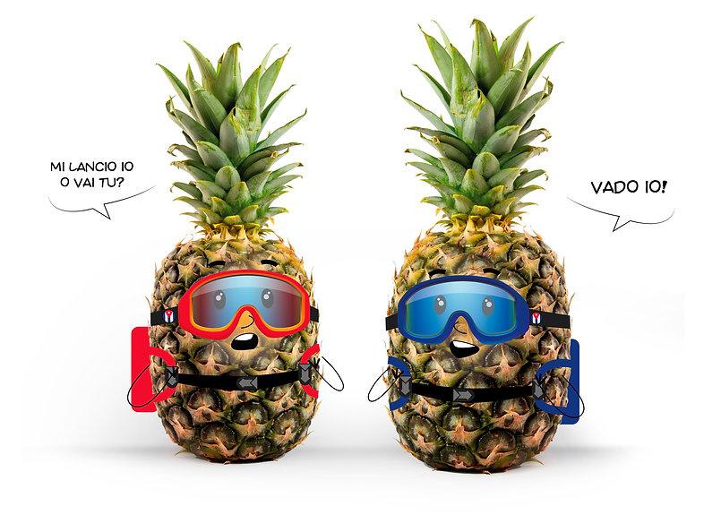 immagine ananas.jpg