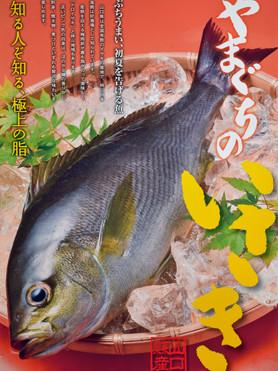 山口県農林水産課