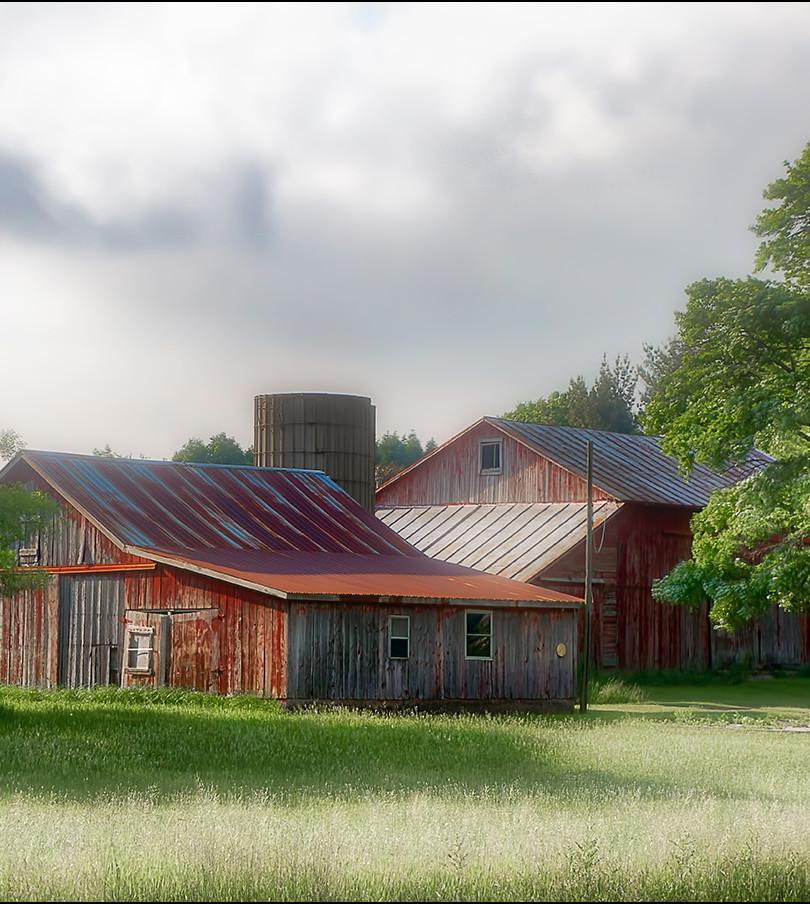 Barns at Dawn