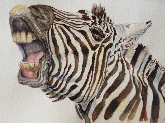 Zebra.jpeg