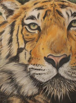 Alyssa Overton Tiger Mixed Media 11x14.J
