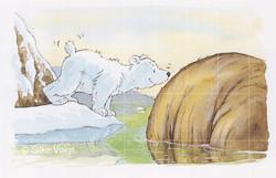 Eisbären 4 Silke Voigt