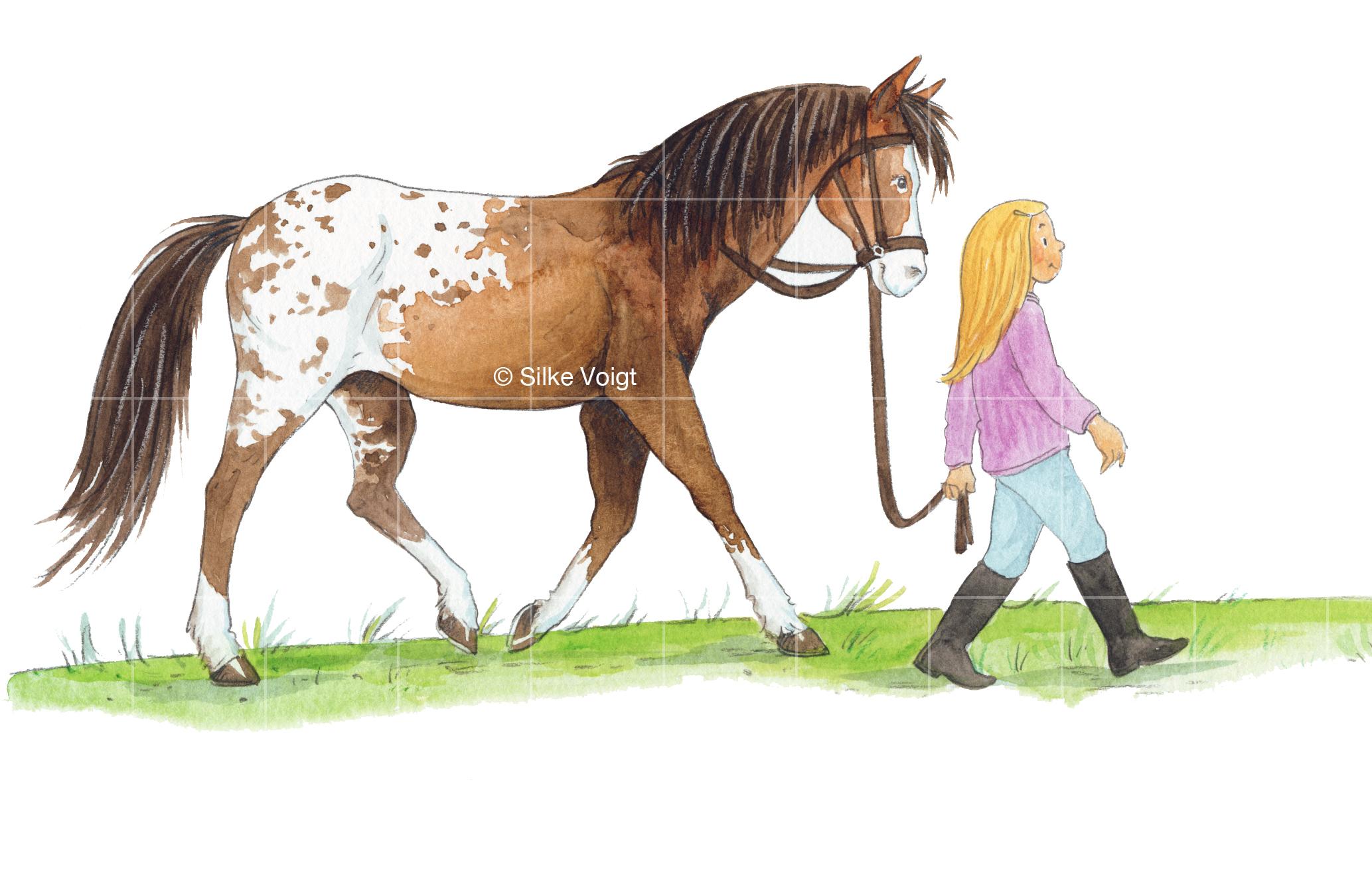 Ponys und Pferde Silke Voigt