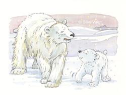 Eisbären 12 Silke Voigt