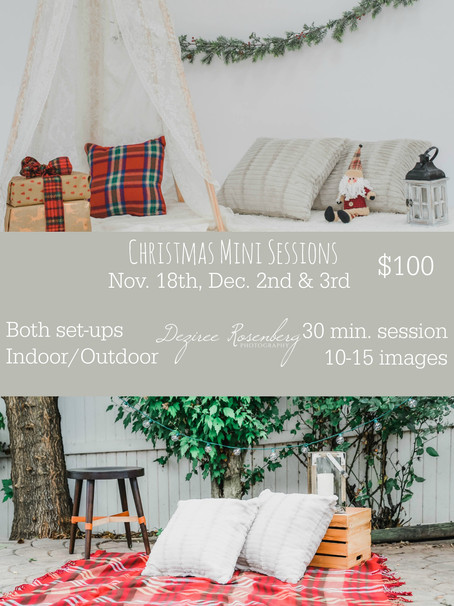 Now Booking Christmas Mini Sessions!