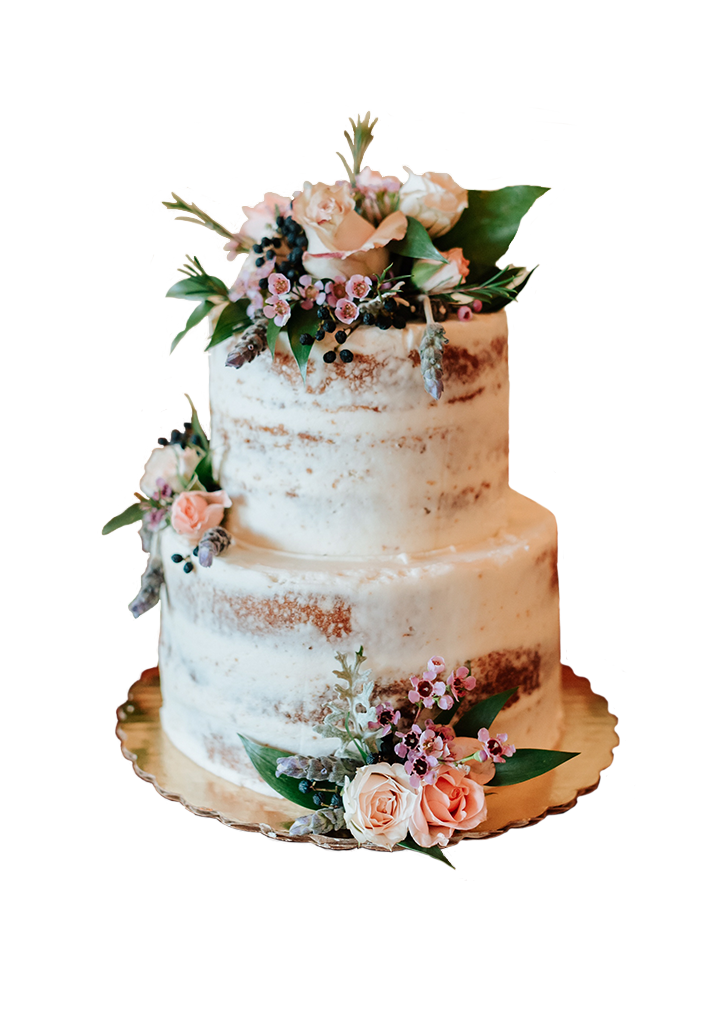 Teresa Cake copy.png