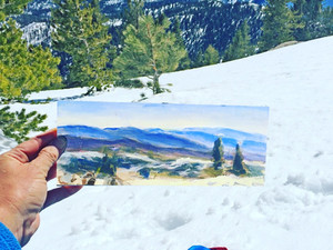 Snowshoes and Paint