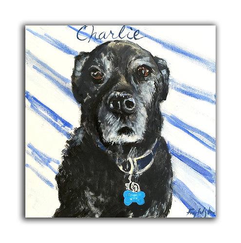 """12"""" x 12"""" Pet Portrait"""