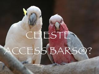 Intrebari frecvente despre Access Bars®