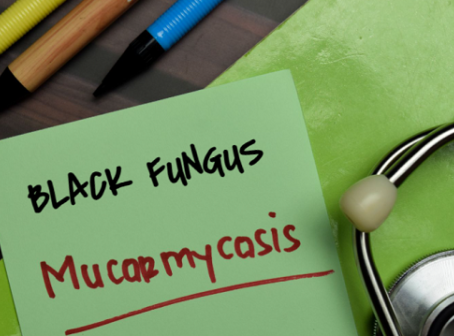 Black Fungus and why it is a big deal