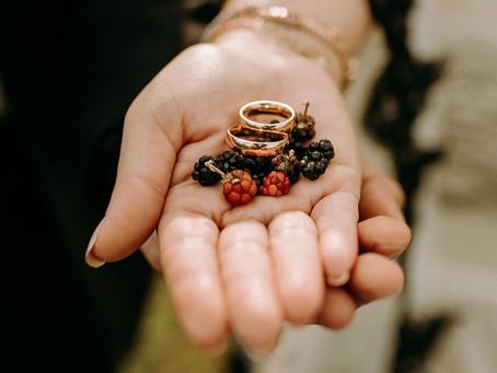 Taraklı'da düğün çekimi; yer sofrası, böğürtlen, 7 asırlık çınar...