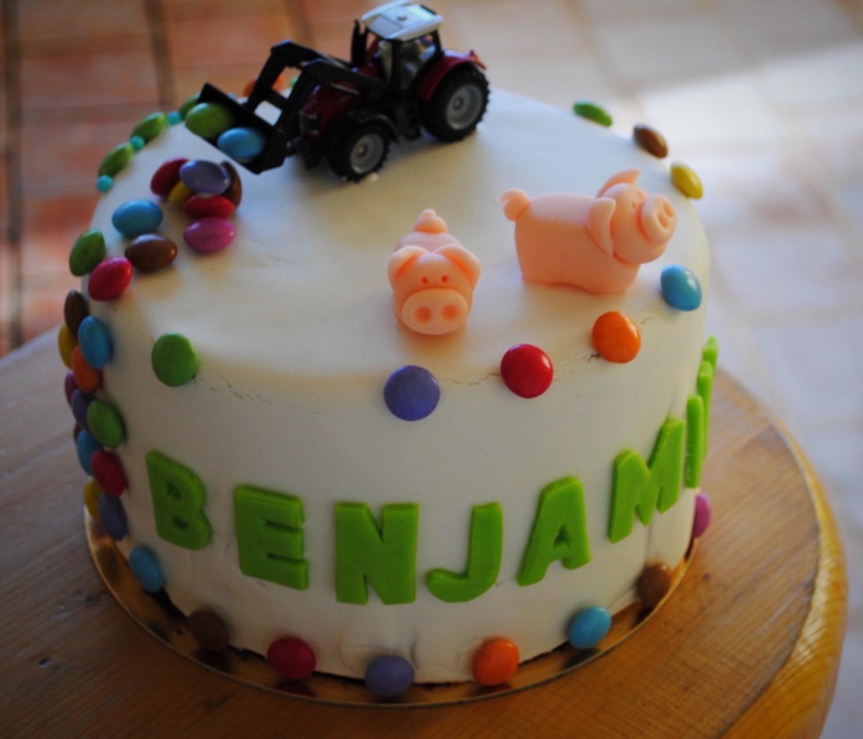 Cake design thème ferme et tracteur