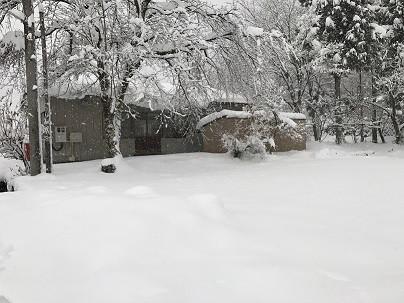 雪の中の工房より