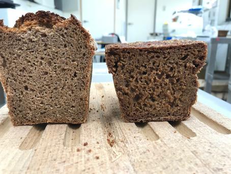 試作品の評価:シュバルツブロート、米粉パン